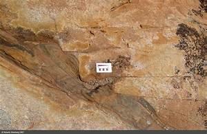 Ultramylonite of the Teixeira Pluton, Borborema Province