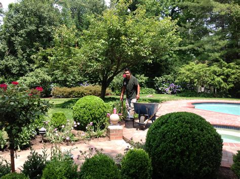 cost of new lawn top 28 cost of a new lawn top 28 cost to seed a new lawn planting new grass 2017 zoysia