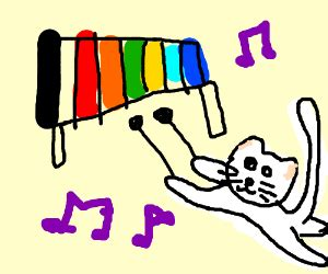 Cat Playing The Xylophone
