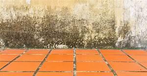 Remontée Capillaire Mur : humidit ascensionnelle les signes de remont es ~ Premium-room.com Idées de Décoration