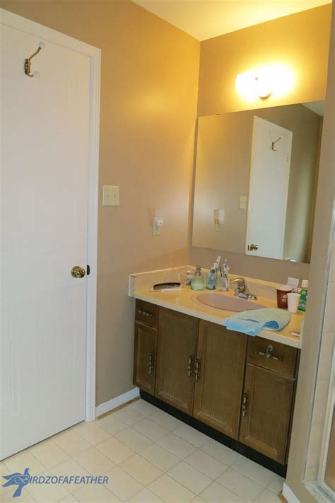 Bathroom Vanity Makeover Ideas by 1000 Ideas About Bathroom Vanity Makeover On