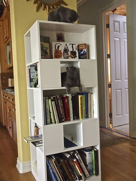 cat bookcase playground furniture tree ideal modern storage designrulz diy bookshelf shelves shelf items cats wooden designs contemporary bookshelves shelving