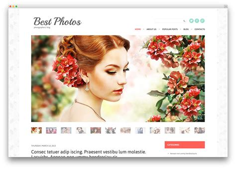 top ten wordpress themes  photographers web hosting