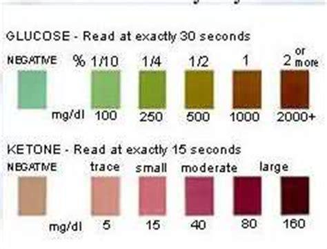 urine testing diabetes  dogs  kdiabetescom forum