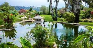 Bassin De Jardin Pour Poisson : mat riels pour bassins de jardin et expert koi d cor ~ Premium-room.com Idées de Décoration