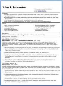 sle resume exles sle sales director resume resume downloads