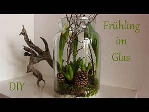 Frühlingsdeko Im Glas : die besten 25 hyazinthe ideen auf pinterest amaryllis jul und hyazinthe glas ~ Orissabook.com Haus und Dekorationen