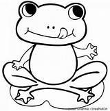 Frog Coloring Printable Frogs Cartoon Sheet Sheets Colorare Frosch Disegni Children Tiere Ausmalbilder Drucken Starry Shine Malvorlagen Toad Female Froglet sketch template