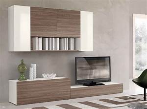 Modern Living Room With Carpet Ikea Besta Tv Storage