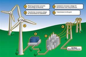 Sharon @ Tamaki Primary School: Renewable things and Non ...