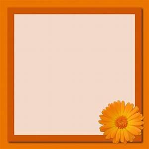 Frame Orange Flower Free Stock Photo - Public Domain Pictures
