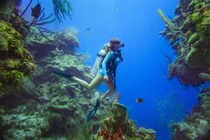 Padi Open Water Diver Manual Answers Chapter 1