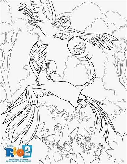 Coloring Rio Sheets Pages Activities Activity Dvd