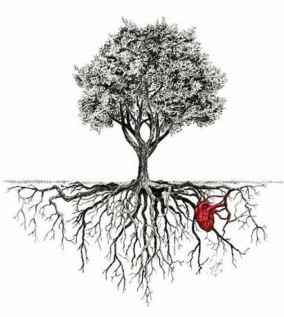 Roots Tree Drawing Tattoo Rooted Ink