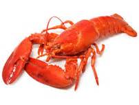 comment cuisiner le homard cuit surgelé calories homard