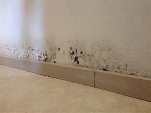 traiter un mur ou un plafond contre le salpetre With moisissure sur plafond de chambre