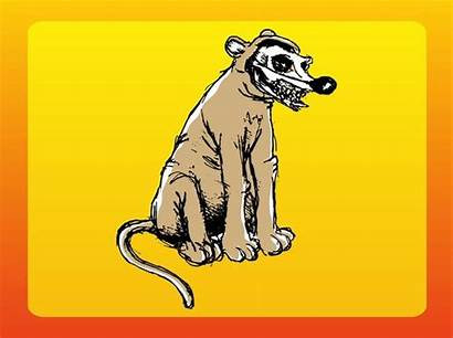 Vector Weird Animal Dead Rat Creature Yellow