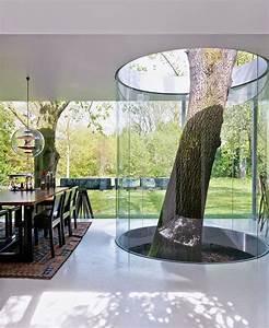Tree Houses - Picmia