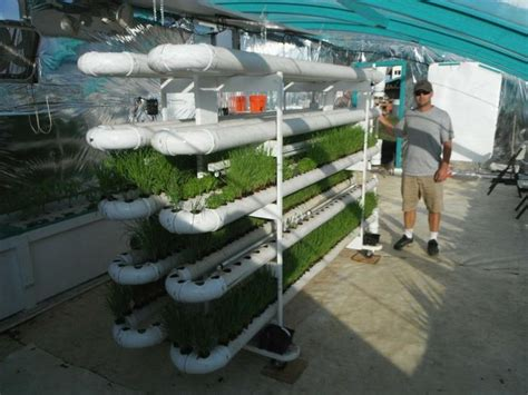 vertical aquaponics system friendly aquaponics