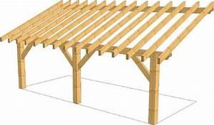 Construction d39un appenti 34 messages for Abri de jardin bois pas cher leroy merlin 5 auvent terrasse appenti bois carport tradi