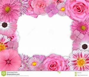 Bilder Mit Weißem Rahmen : blumen rahmen rosa purpurrote blumen auf wei stockbilder bild 29812264 ~ Indierocktalk.com Haus und Dekorationen
