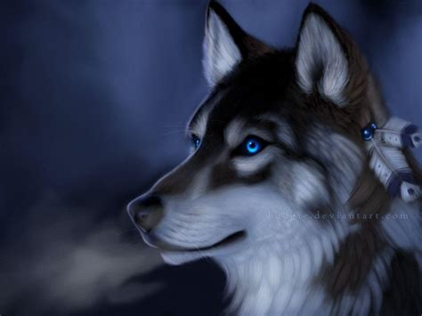 Beautiful Anime Wolf Wallpaper by Wolf Wallpapers Wallpaper Cave