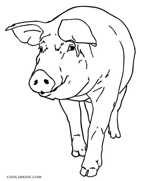 The Pig Coloring Pages Free Printable Pig Coloring Pages For Cool2bkids