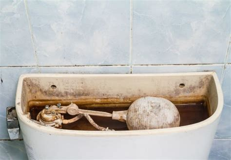 How To Clean A Toilet Tank—and Keep It That Way  Bob Vila