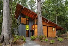 Shed Home Designs by Single Sloped Roofs Ramp Up Modern Homes