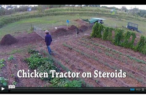 compost bin kitchen i cut my chicken feed bill 100 abundant permaculture