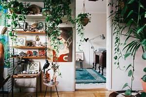 Come Arredare Casa In Stile Jungle  Mobili E Complementi D U2019arredo Ad Effetto