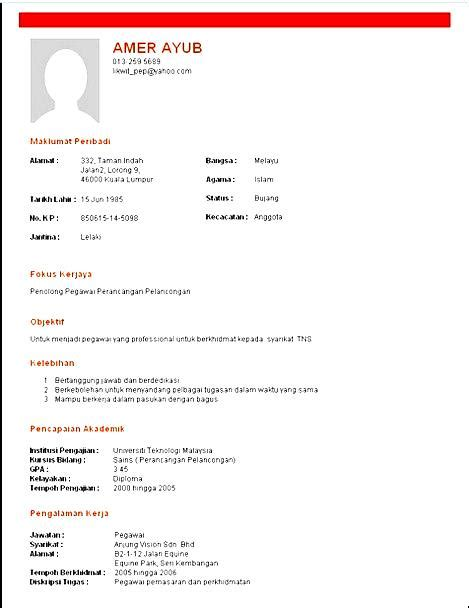 Wizard Resume by Resume Wizard Template Free Sles Exles