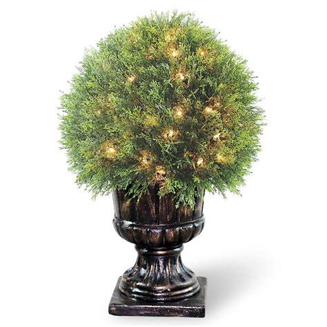 "National Tree Company 27"" Lighted Upright Juniper Ball"