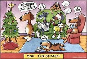 christmas jokes Ermilia