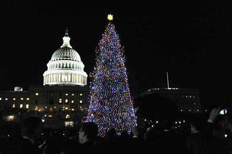 denver christmas trees colorado scout lights capitol christmas tree the denver post 3074
