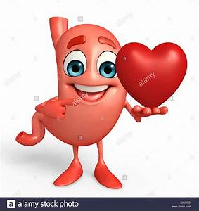 Cartoon Character Of Stomach With Heart Stock Photo