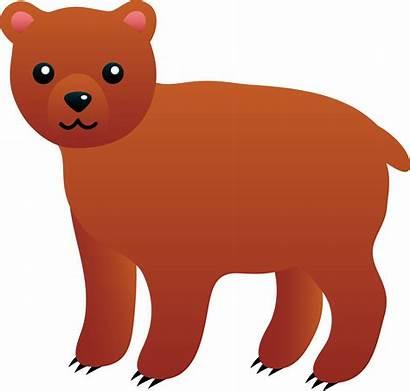 Bear Clip Brown Clipart Cartoon Cub Transparent