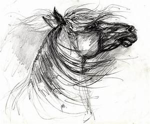 The Horse Sketch Drawing by Angel Tarantella