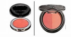 Lakme Makeup Kit Box In Stan - Makeup Vidalondon