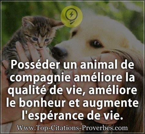 citation bonheur poss 233 der un animal de compagnie