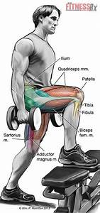 30 Best Images About Fitness Articles And Nasm Info On