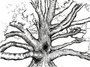 pen and ink tree painting by joseph hawkins