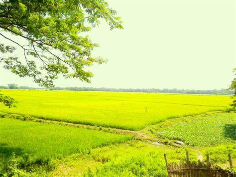 wallpaper wallpaper bangladesh natural paradise
