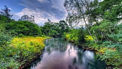 Nature Landscape Summer Flowers River Meadow Coast