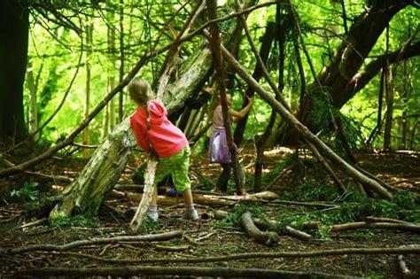 nature kindergarten brings learning outdoors  edmonton