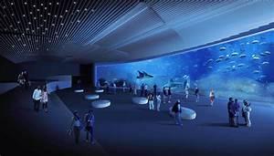 The aquarium of Las Palmas de Gran Canaria faces the final stretch for its opening Wavia Hotel