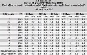 308 Ballistics Chart 1000 Yards 308 Ballistics Chart Gallery Of Chart 2019