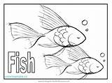 Coloring Fish Tuna Puffer Animal Printable Getcolorings Koi Sheet Zebra Library Clipart Popular Line sketch template