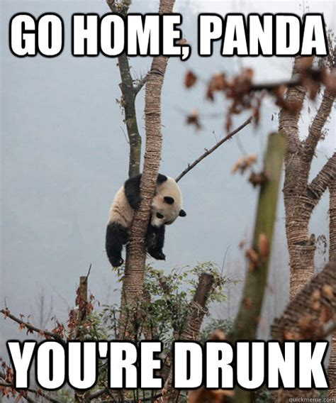 Drunk Panda Meme - go home panda you re drunk cant hold his liquor quickmeme