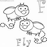 Coloring Pages Fly Facial Printable Expression Sheets Coloringfolder Getcolorings Animals sketch template